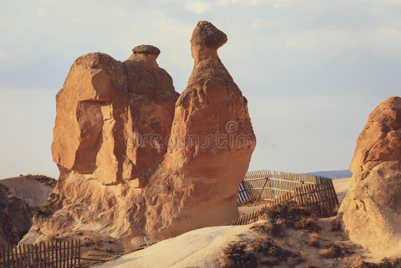 Camel rock at Devrent valley Imaginary valley in Cappadocia stock photography