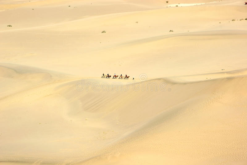 Download Camel train in desert stock image. Image of sand, desert - 16463955