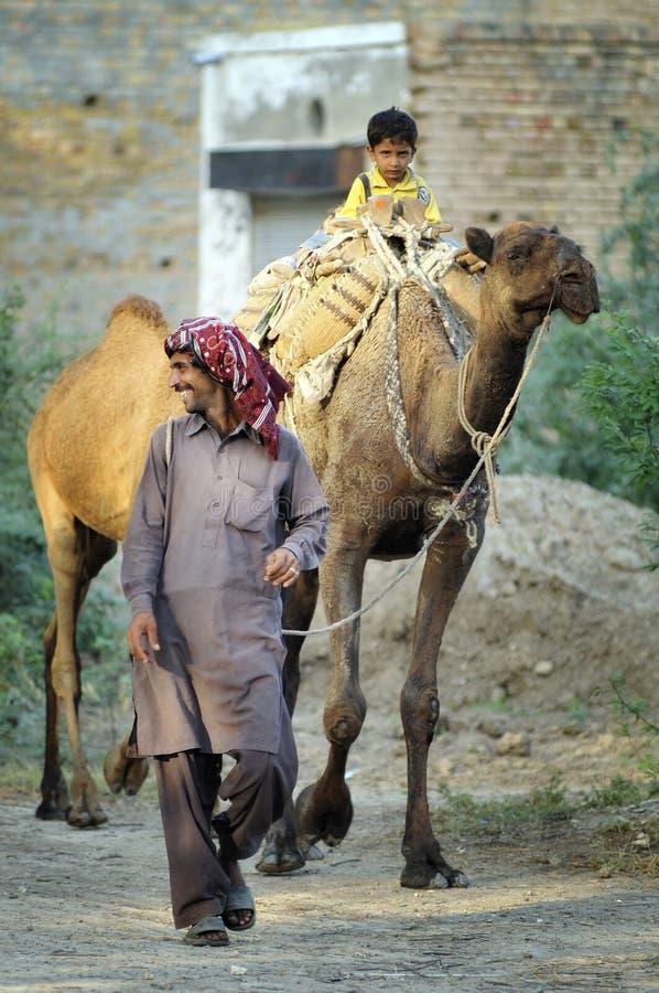 Camel Travellers. Near Lillah City, Pakistan. Water shortage royalty free stock photos
