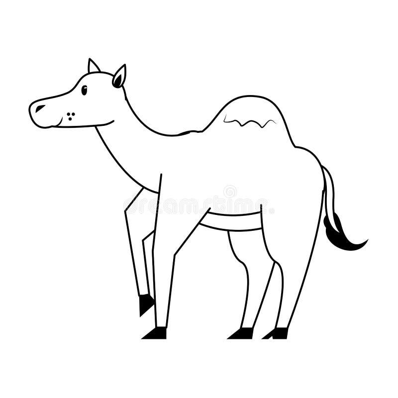 Camel wildlife cute animal cartoon in black and white stock illustration