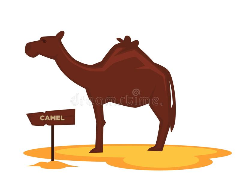 Camel zoo animal and wooden signboard vector cartoon icon for zoological park stock illustration