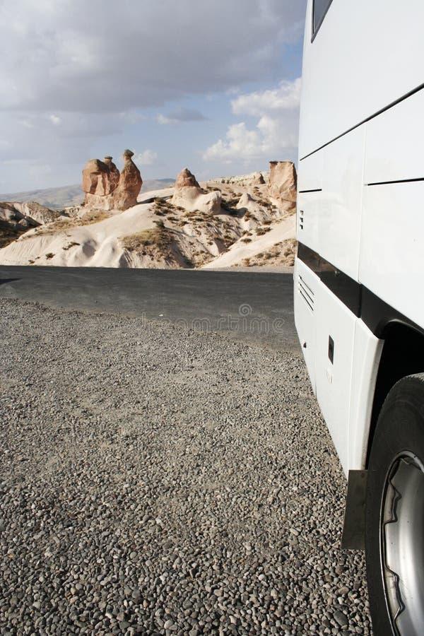 Camelandcoach stock afbeeldingen