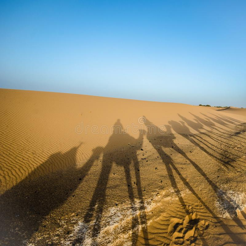 Camelback riding shadows in Sahara royalty free stock photo
