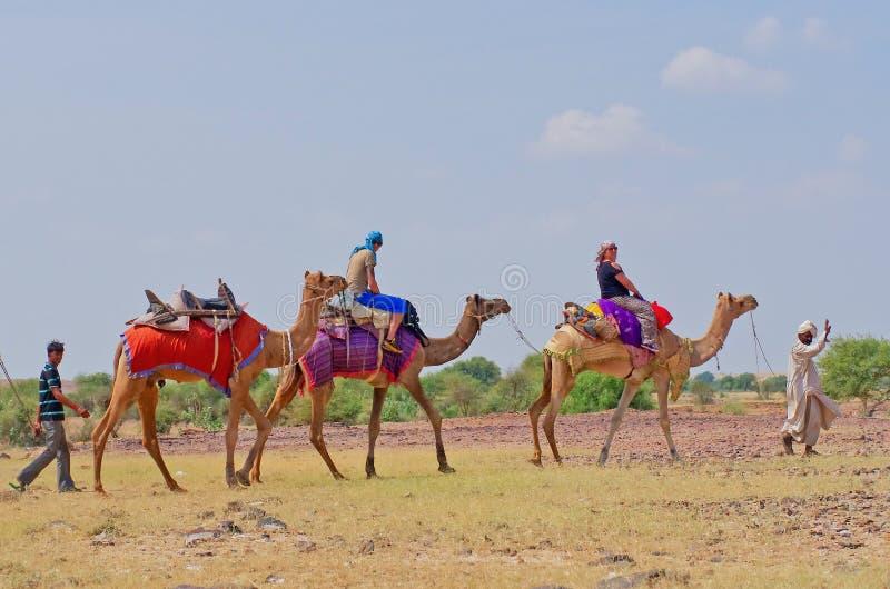Cameleer和游人在沙漠在Jaisalmer,印度 免版税库存照片