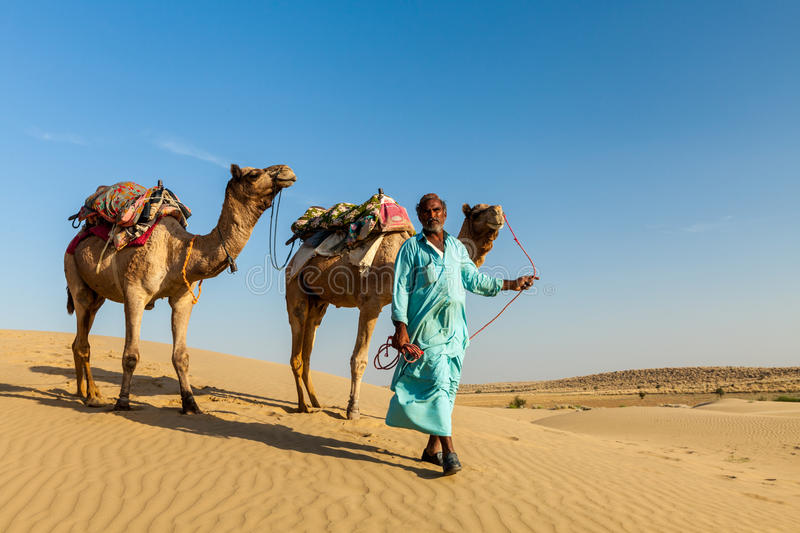 Cameleer (camel driver) with camels in dunes of Thar desert. Raj. Rajasthan travel background - Indian cameleer (camel driver) with camels in dunes of Thar royalty free stock photo