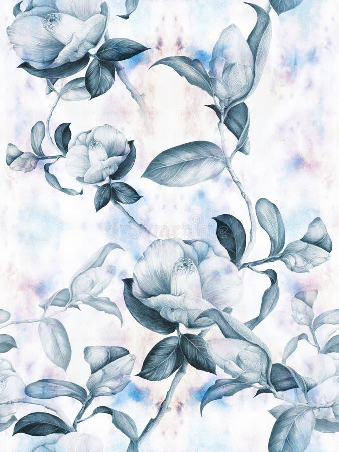 Camelia - flores, brotes y hojas - en un fondo de la acuarela Collage de flores, de hojas y de brotes en un fondo de la acuarela  ilustración del vector