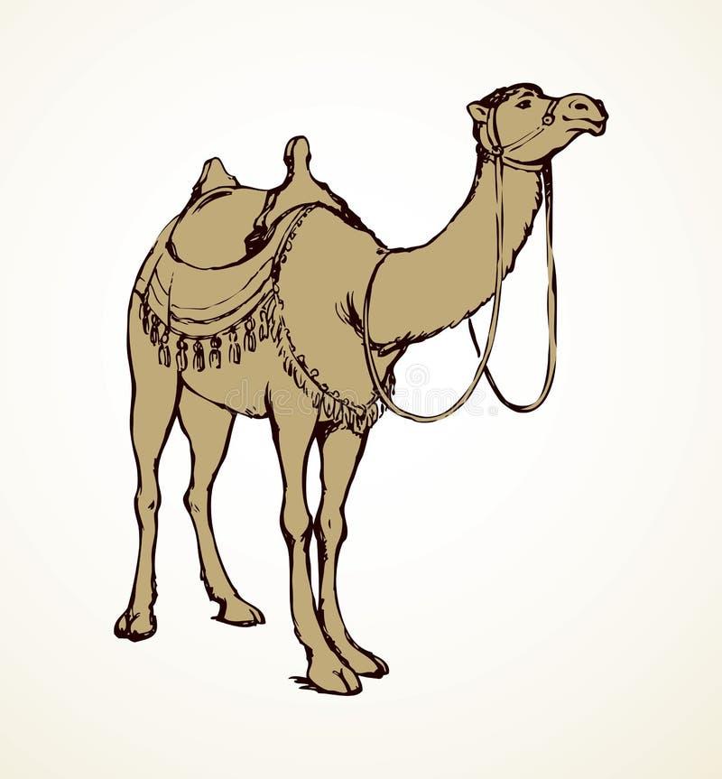 Camello Bosquejo del vector libre illustration