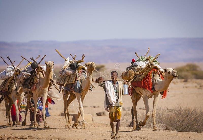 Camello Caravane en Bara Desert magnífica imagen de archivo libre de regalías