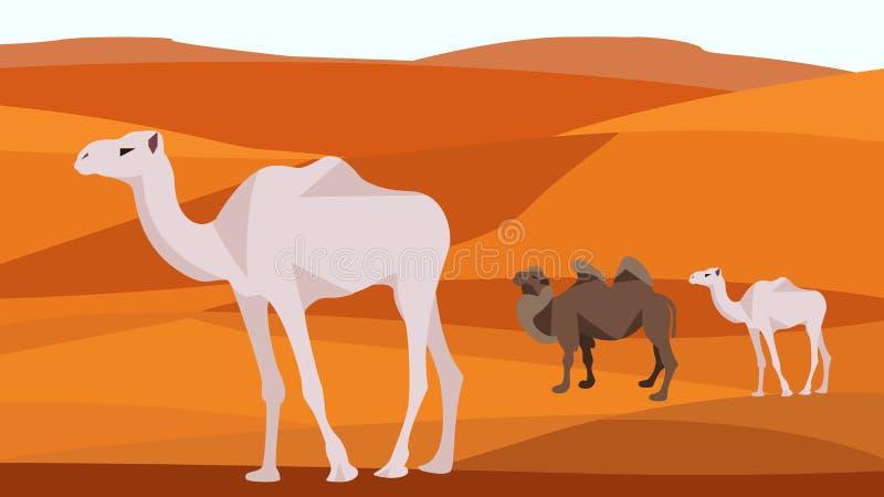 Camello en el desierto, colinas de la arena, dunas, animales stock de ilustración