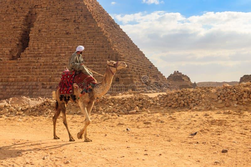 Camello que monta beduino cerca de las grandes pirámides de Giza en El Cairo, Egipto foto de archivo libre de regalías