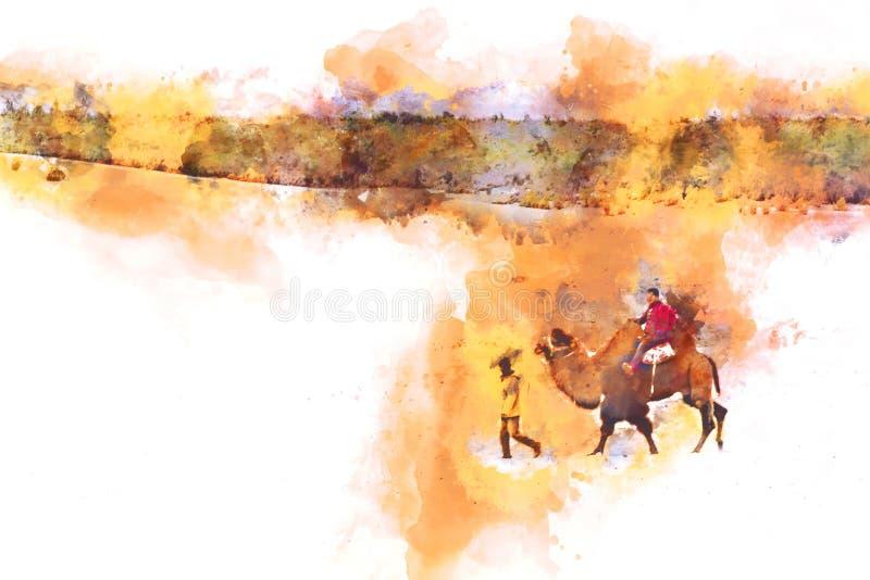 Camellos en la pintura de la acuarela del desierto en los wi blancos del fondo libre illustration