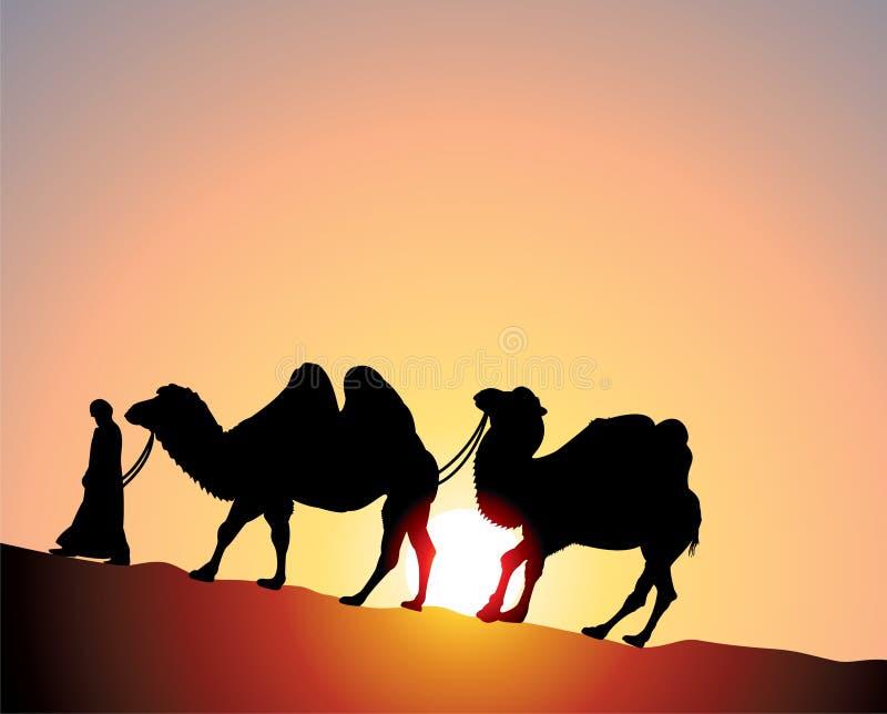 Camellos y beduino stock de ilustración