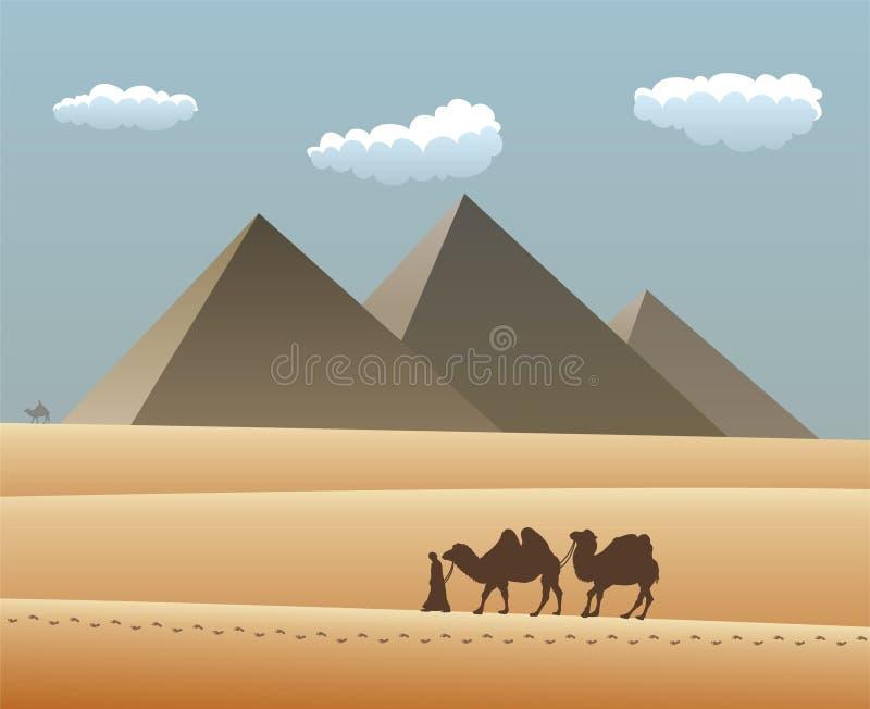 Camellos y beduino en desierto stock de ilustración