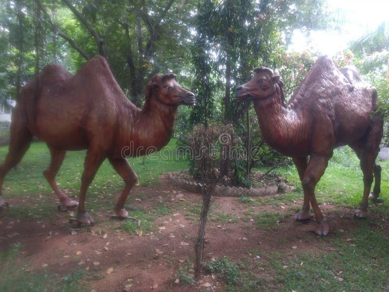 Camelo artificial no parque fotos de stock