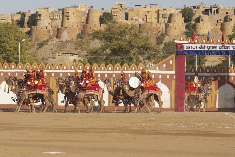 Camelo Tatoo imagem de stock