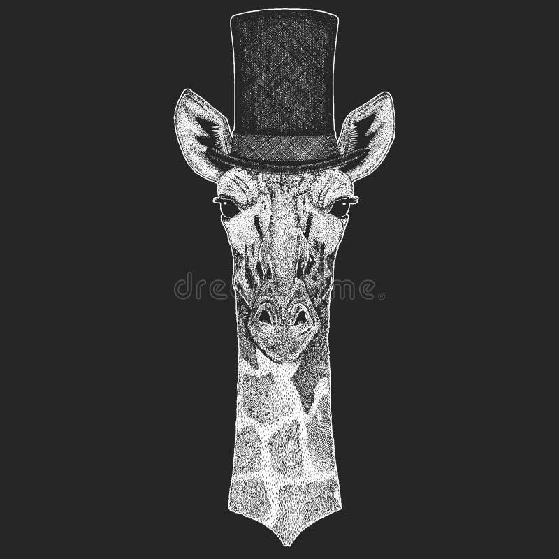 Camelopard, żyrafa Odgórny kapelusz, butla Modnisia zwierzę, dżentelmen Klasyczny pióropusz Drukuje dla dzieci koszulki, dzieciak royalty ilustracja