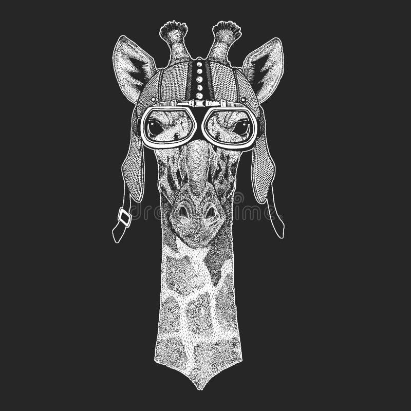 Camelopard, żyrafa rocznika motocyklu hemlet Retro stylowa ilustracja z zwierzęcym rowerzystą dla dzieci, dzieciaki odziewa, t ilustracja wektor