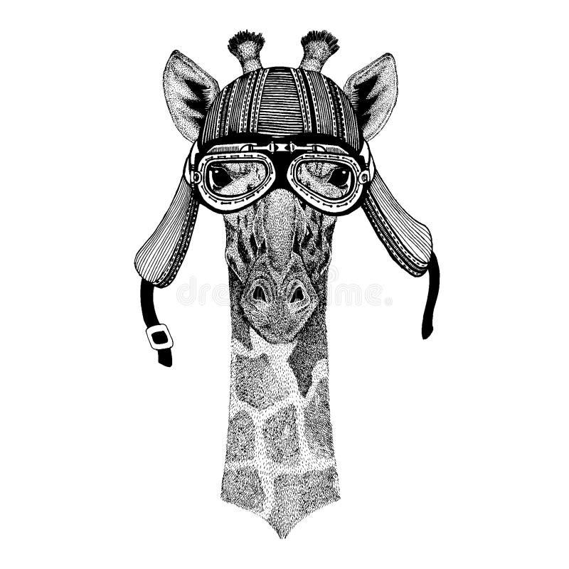 Camelopard för löst hjälm för motorcykel cyklistdjur för giraff bärande Utdragen bild f?r hand f?r tatueringen, emblem, emblem, l vektor illustrationer