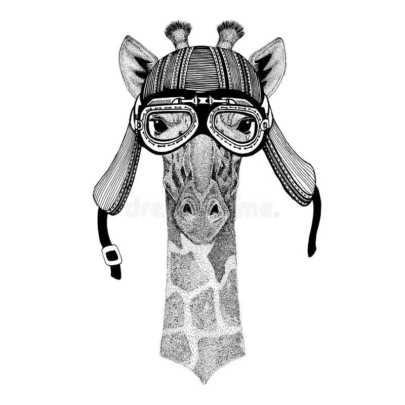 Camelopard, gezeichnetes Bild der Giraffe Hand vom tragenden Motorradtiersturzhelm für T-Shirt, Tätowierung, Emblem, Ausweis, Log stock abbildung