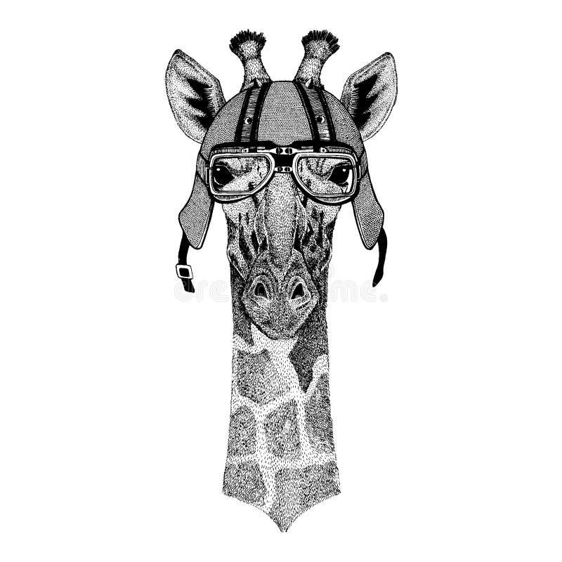 Camelopard giraff som bär en motorcykel, aero hjälm Utdragen bild för hand för tatueringen, t-skjorta, emblem, emblem, logo, lapp vektor illustrationer