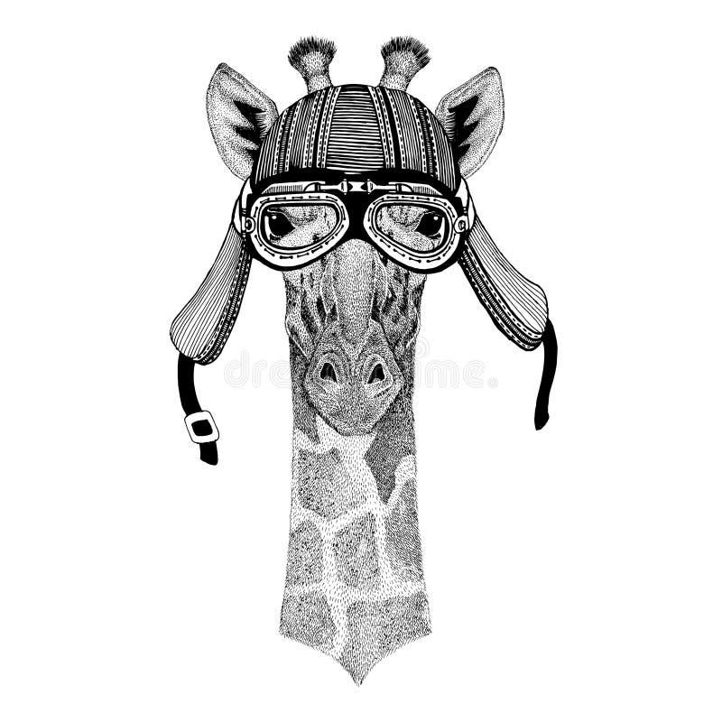 Camelopard, Radfahrermotorradfliegerfliegenclub-Sturzhelm Illustration des wilden Tieres der Giraffe tragende für Tätowierung, Em stock abbildung