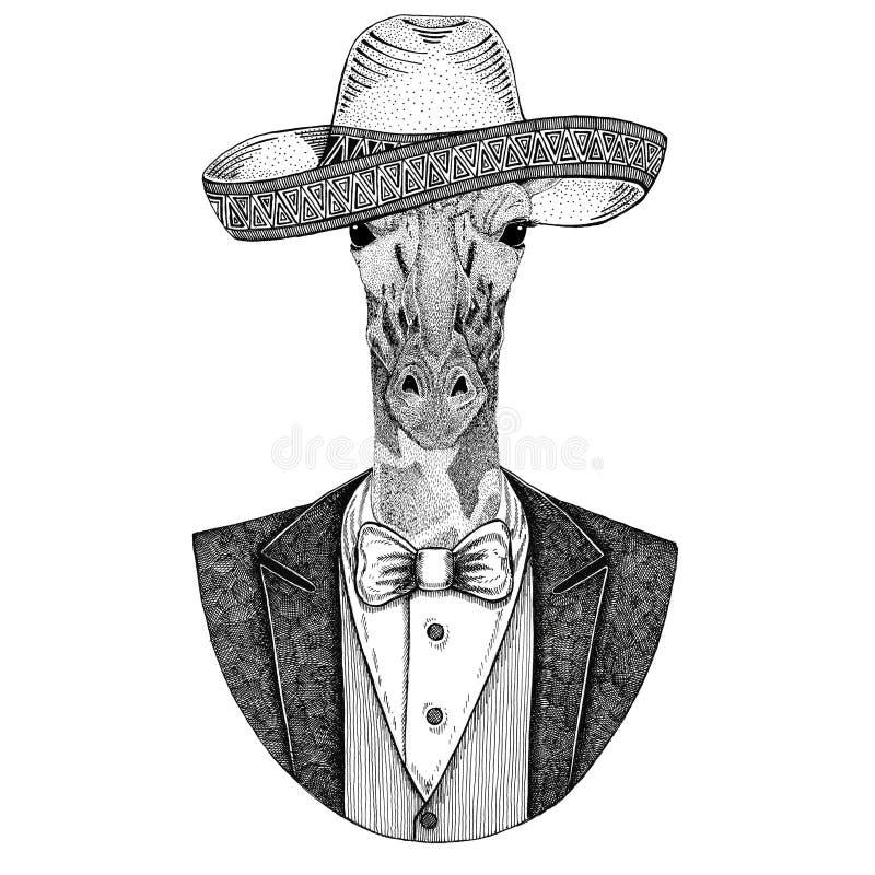 Camelopard, wildes Tier der Giraffe tragender Sombrero - traditionelle gezeichnete Illustration des mexikanischen Hutes Hand für  lizenzfreie abbildung