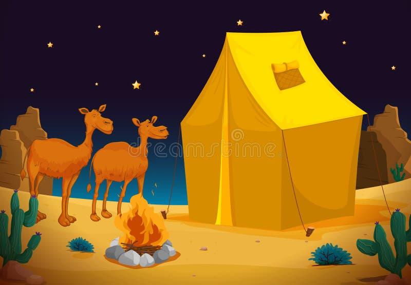 Camelos e barraca ilustração stock