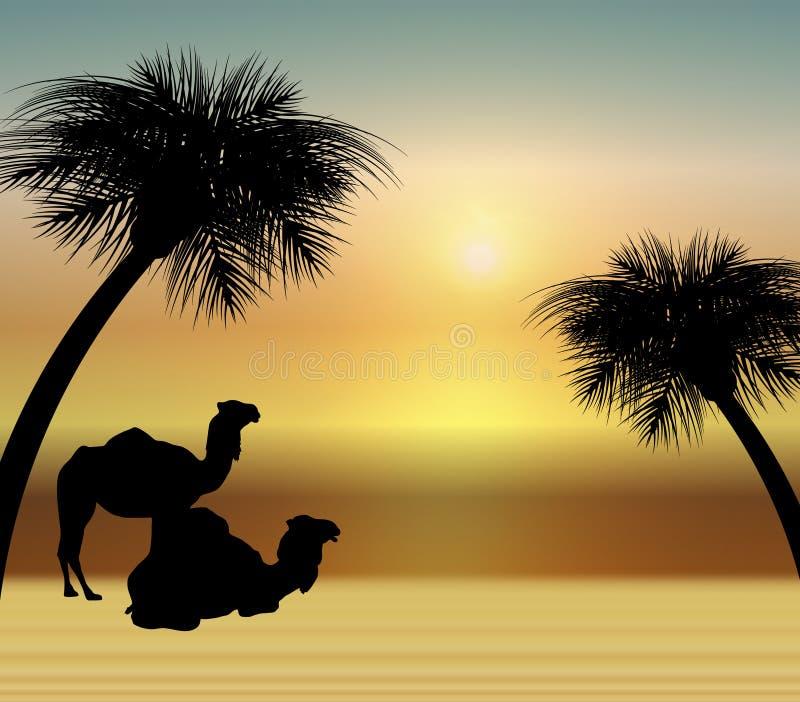 Camelos no nascer do sol ilustração do vetor