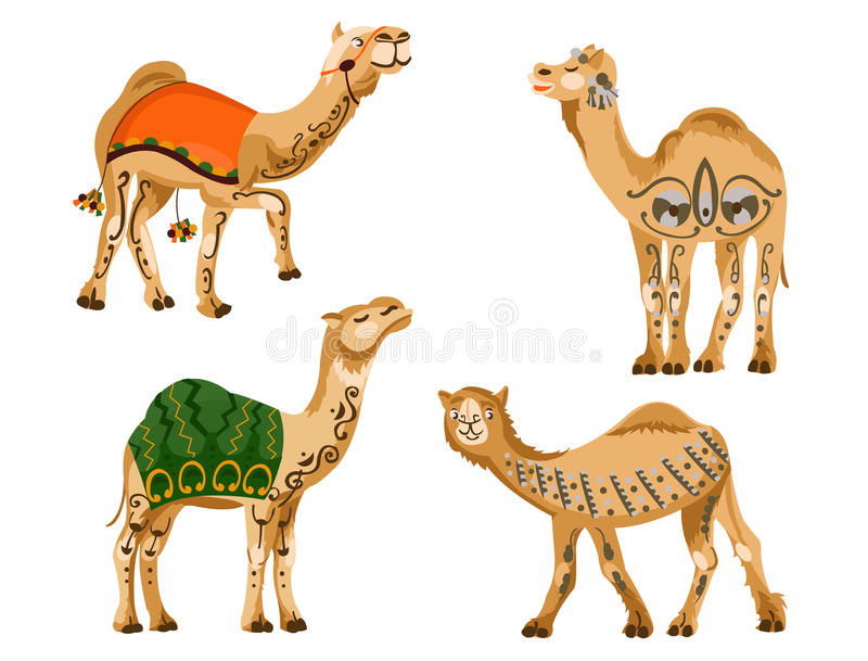 Download Camels stock vector. Illustration of domesticated, arab - 25528959