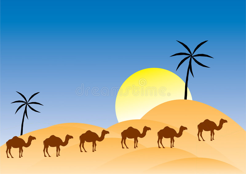 Download Camels in a desert stock vector. Image of dromedary, extreme - 8625347