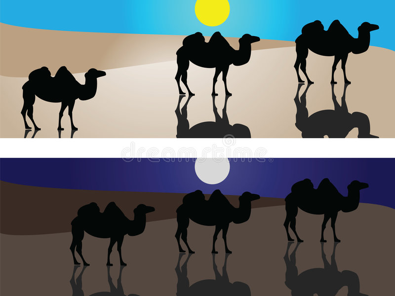 Download Camels in desert stock vector. Image of black, persevering - 8894393