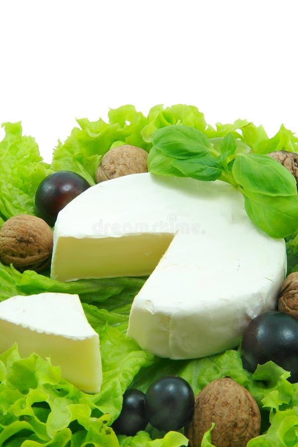 Camembert royalty-vrije stock fotografie