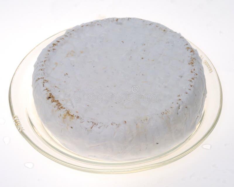 Camembert imagem de stock royalty free