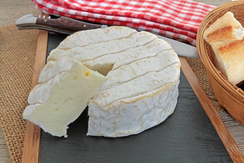 camembert стоковое фото