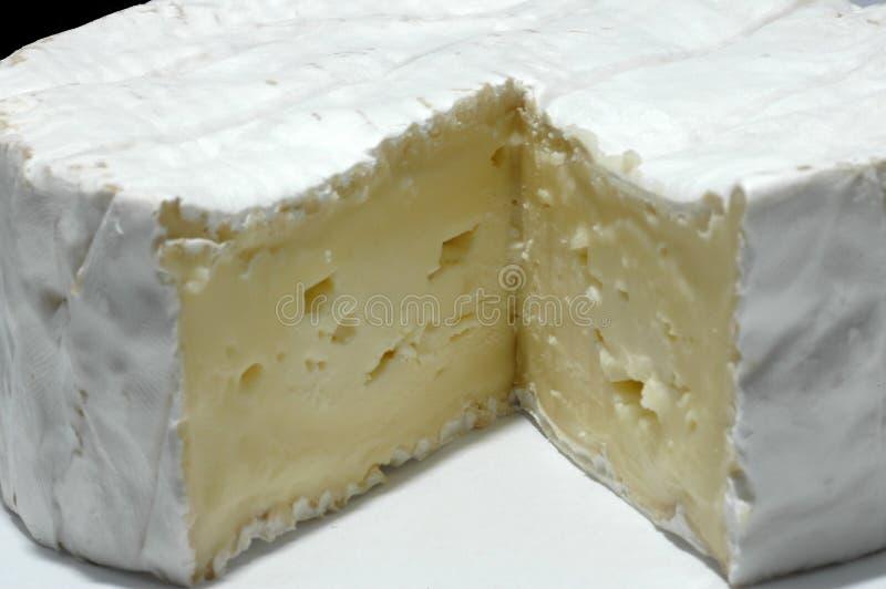 Camembert Στοκ Εικόνες