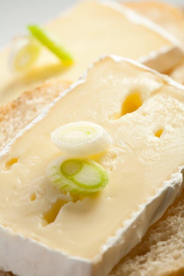 Camembert - Minisandwiche lizenzfreies stockfoto