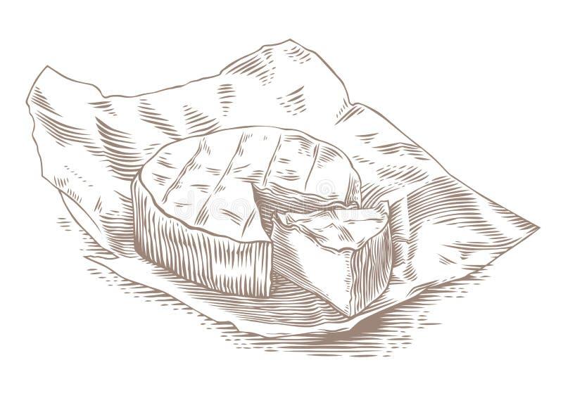 Camembert na papierze ilustracja wektor