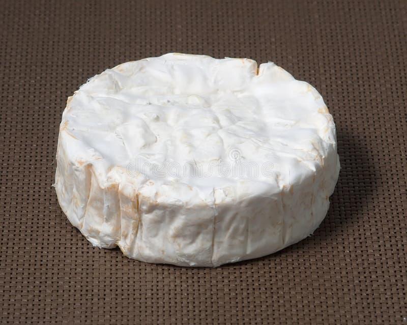 camembert normandy arkivbild