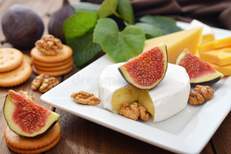 Camembert ser zdjęcie royalty free
