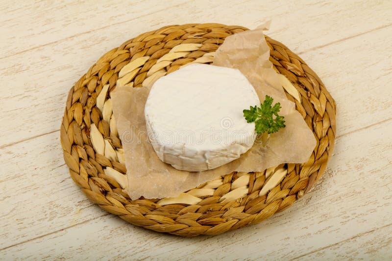 Camembert ser obraz royalty free