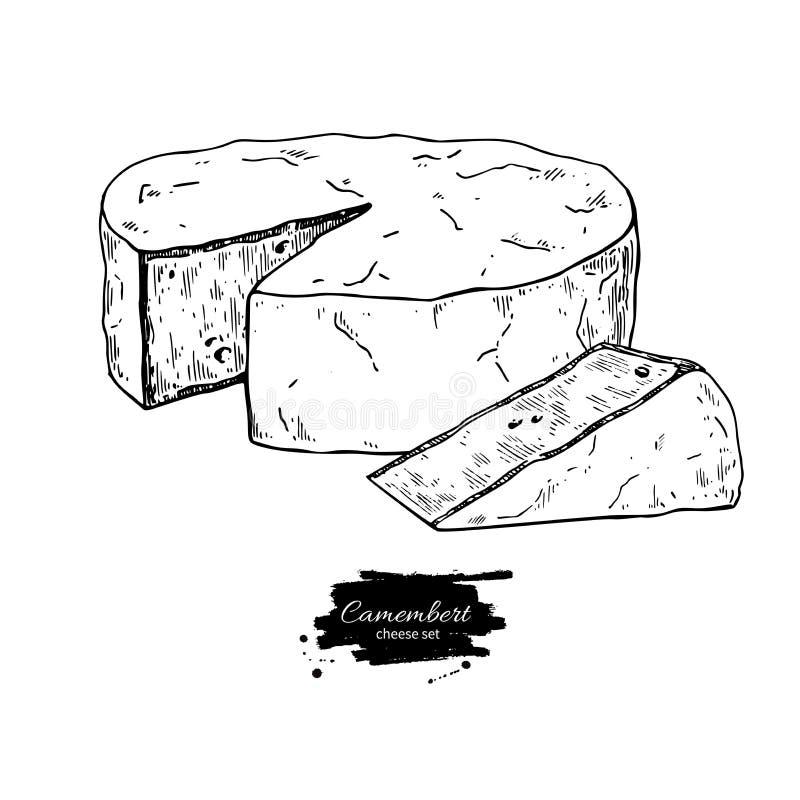 Camembert sera blok i trójboka rysunek Wektorowa ręka rysujący karmowy nakreślenie ilustracji