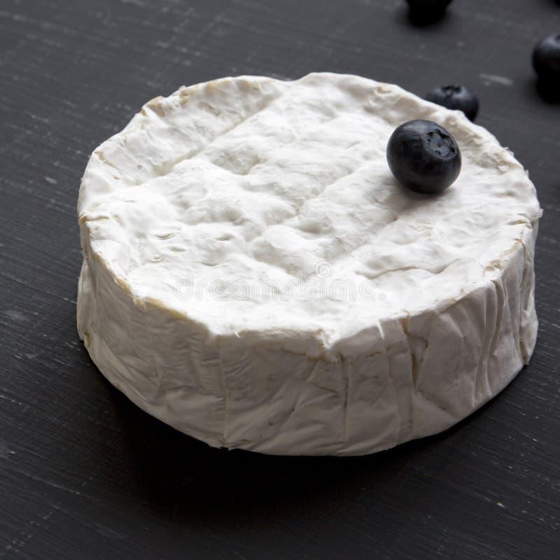Camembertost med blåbär på mörk bakgrund, sidosikt Mat för vin Mjölka produktion closeup royaltyfri bild
