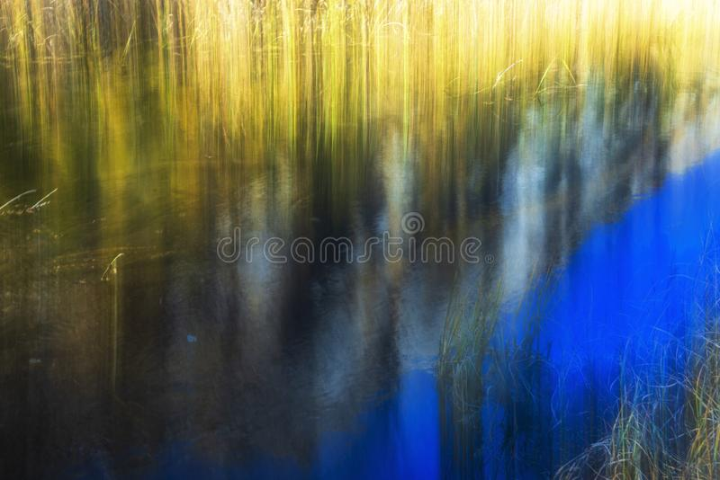 Camera blur effect in a wonderful autumn day in alpe devero. Camera blur abstraction over a grass meadows growing on a water pond with a nice mountain reflection stock photography