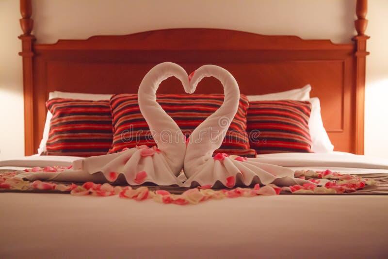 Camera da letto romantica interna, baciando gli asciugamani di origami del cigno e la decorazione bianca rosa fresca spruzzata di fotografia stock libera da diritti