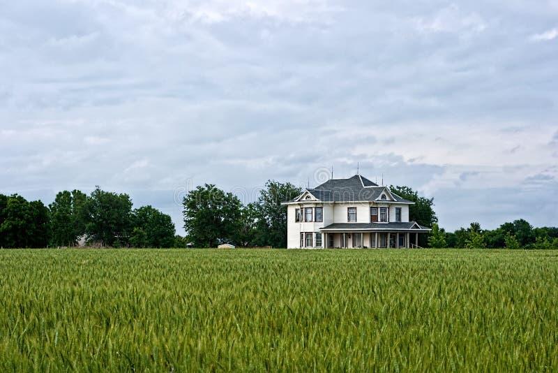 Camera dell'azienda agricola del Victorian e campo di frumento fotografie stock libere da diritti