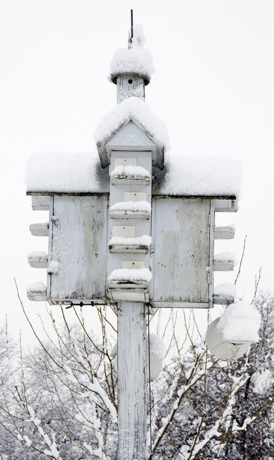 Camera dell'uccello coperta in neve fotografia stock