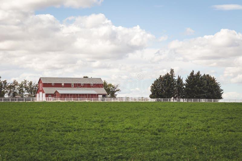 Camera e campo dell'azienda agricola in campagna fotografia stock