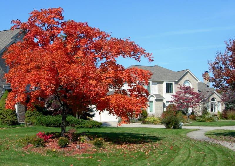 Camera e paesaggio di autunno fotografie stock
