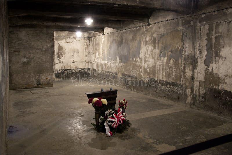 Camera a gas di Auschwitz - Polonia fotografia stock
