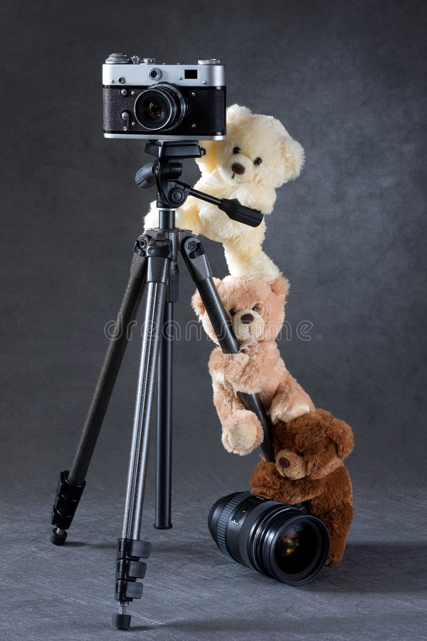 Download Camera And Group Of Teddy Bears Isolated Royalty Free Stock Photos - Image: 8531338